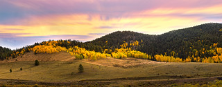 Autumn in Colorado II