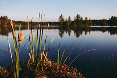 Edit -1-6 (Dane Van) Tags: ccr canadacreekranch atlantamichigan puremichigan 5dclassic 35mm summer sunrise