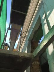 IMG_8098 (Rick Dickinson) Tags: faro restoration algarve