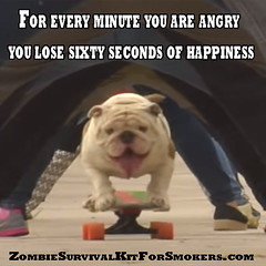 For every minute you are angry you lose sixty seconds of happiness (ZombieSurvivalKitForSmokers) Tags: dugout one hitter zombiesurvivalkitforsmokers marijuanapipe dugoutpipe motivational zombie inspirational zombiesurvivalkit survivalkit weedpipe marijuana reefer weed dope green ganja dragons survival kit madeinusa madeinamerica