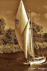 Horning river trip 24.09.17...-1.24_wm (madmax557) Tags: sailing eastanglia norfolk boats boating norfolkbroads uk england greatbritain photodirector5 river