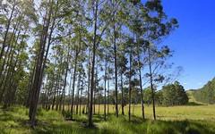 - Bernies Top Mount Lindesay, Woodenbong NSW