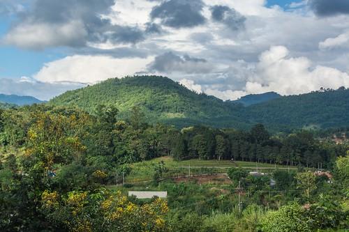 mae salong - thailande 11