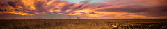 Fire In The Sky (Žèę Ķ) Tags: vancouver sunset sundown clouds sky landscape seascape water ocean grass meadow red yellow orange blue burningsky goldensky panorama wide golden