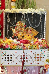 Balarama Purnima 2017 - ISKCON London Radha Krishna Temple Soho Street - 07/08/2017 - IMG_4264 (DavidC Photography 2) Tags: 10 soho street radhakrishna radha krishna temple hare krsna mandir london england uk iskcon iskconlondon internationalsocietyforkrishnaconsciousness international society for consciousness summer monday 07 7th august 2017 lord balarama jayanti purnima appearance day festival deity murti murtis darshan arati room templeroom altar shrine