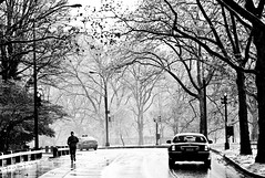 Whenever I'm Alone (Thomas Hawk) Tags: centralpark manhattan nyc newyork newyorkcity usa unitedstates unitedstatesofamerica auto automobile bw car fav10 fav25 fav50