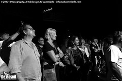 2017 Bosuil-Het publiek bij Back To Back en The Lachy Doley Group 3-ZW