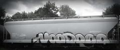 CELX 565 - voodoo (timetomakethepasta) Tags: voodoo freight train graffiti art grainer celx benching selkirk new york photography