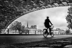 Notre-Dame from Pont Marie (Mustafa Selcuk) Tags: 2017 paris august fujifilm street streetphotographer streetphotography streetshooter travel xpro2 blackandwhite monochrome monochromatic bnw bw siyahbeyaz