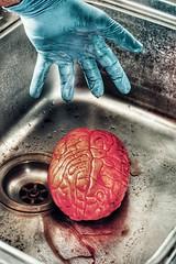 Disease. (coalhole2) Tags: brain blood stainlesssteel sink glove blue red orange human inhuman curse virus condition surgery fake
