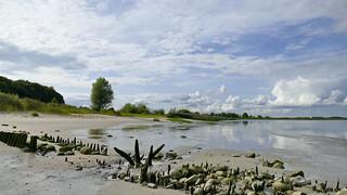 Elb- Ufer