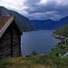Norwegen 1998 (154) Aurlandsfjord