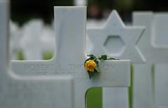 Cimetière Americain - Colleville/Mer (14) (Aurél) Tags: cimetière américain 2017 ww2 calvados amercian collevillesurmer guerre omaha cross normandie usa