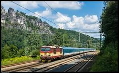 """371 005 """"Pepin"""" - Rathen by Bastian Weber - Inzwischen ist 371 005 der einzige Knödel der noch nicht in den blauen Najbert-Farbtopf gefallen ist. Sowohl alle Schwestermaschinen, als auch die 372 von ČD Cargo präsentieren sich in den neuen Unternehmensfarben. Hier rollt Pepin mit dem EC378 nach Kiel durch den Betriebsbahnhof Rathen."""