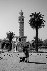 all along the clock tower (Just Ron ;)) Tags: izmir turkey blackwhite nikon imageron tree bird architecture