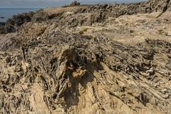 Belle-Île-en-Mer (a.mille69) Tags: laturballe paysage