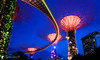The Gardens by the Bay OCBC Skyway at (Bright Ideas with Chan Udarbe) Tags: 1855mm d5000 f3556singapore gardensbythebay nikon travel trip