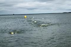 "I Mityng Triathlonowy - Nowe Warpno 2017 (198) • <a style=""font-size:0.8em;"" href=""http://www.flickr.com/photos/158188424@N04/36691404572/"" target=""_blank"">View on Flickr</a>"