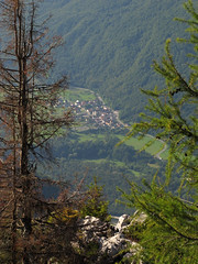 Srpenica (Damijan P.) Tags: gore hribi mountains hiking slovenija slovenia alpe alps julijskealpe julianalps bovec velikibabanskiskedenj prosenak