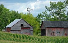 twin fountains (WORLDS APART PHOTO) Tags: barns windmillwednesday windmills wisconsin agriculturaldecay agriculture farming field crop manitowoc outdoors rural ruraldecay