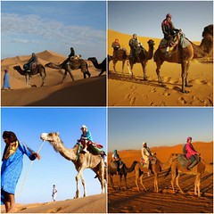 Morocco Excursions Say Towards Entertainment? (camelsafarie) Tags: private morocco tours