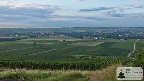 Selzstellung - Selzen und Hahnheim