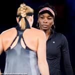 Venus Williams, Petra Kvitova