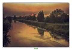 THE FLEETING SUN (régisa) Tags: coucher soleil arbre rivière aa canal calais canaldecalais bowerbirds ruminghem