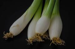 Scallions (frankmh) Tags: scallion onion vegetable greenonion springonion hittarp sweden indoor