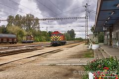 449 021 and A25 083 in Kaba (ThanksDrBeeching) Tags: mav kaba vasut vasutallomas locomotive diesel ganz ganzmavag m44 449 a25 449021 a25083 train loco station
