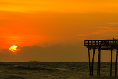 Lonely Bird (MrLoveland) Tags: sunrise redsky orange red colors color sun summer morning dawn beach water waves golden vacation travelphotography travel beautiful beacheslandscapes obx outerbanks northcarolina