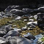 o rio (1)