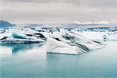 Iceland Adventures ! (Hëllø i'm Wild) Tags: analog film 35mm iceland icelandadventures travel trip nature adventures outdoor olympusom10 lomographycolornegative400 jökulsárlón hike