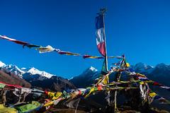 Gocha-la trek in Sikkim, India (David Ducoin) Tags: asia buddhism buddhist dzongri gochala hike himalaya india kangchenjunga landscape mountain nationalpark prayerflag religion sikkim snowcap trek wind gangtok in