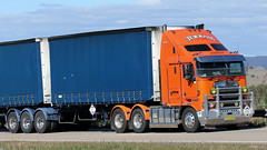 ORANGE Crops (Jungle Jack Movements (ferroequinologist)) Tags: kenworth yass kalari yellow orange hume highway cabover nose renmark south australia sa nsw new wales truck tractor prime mover diesel petrol smoke injected motor engine driver cab cabin fast brake forward reverse wheel exhaust loud beast hood cubic inches hp horsepower gear gears haul haulage freight trucker transport carry shipping delivery bulk lorry hgv wagon road semi trailer double b cargo interstate articulated load freighter shipment power todlam teamster
