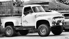 F-Bomb... (Stu Bo) Tags: ford truck truckspotting ride rebel rusty crusty sbimageworks oldschool onewickedride oneofakind vintage blackandwhite bw bnw monotone