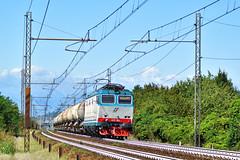 E652.092 MERCITALIA RAIL MRV 50613 Verzuolo - Massa Zona Industriale in transito a Cambiano(TO) (simone.dibiase) Tags: e652092 mercitalia rail mrv 50613 verzuolo massa zona industriale transito cambianoto e652 trenitalia cargo cargoitalia italia xmpr lingotto fs ferrovie dello stato italiane 092 train station stations rails railway railways italy france francia loco locos locomotive locomotiva mir mirrail nikon d3300 dslr camera nikond3300 passion passione trainspotter best picture world simone di biase simonedibiase merci