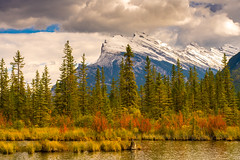Vermillion Lakes Fall Colors (www.mikereidphotography.com) Tags: vermillionlakes banff fallcolors bowlake canadianrockies reflection sony mirrorless a7r2 zeiss