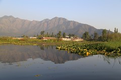 Dal Lake, Srinagar (Beautiful Creation) Tags: srinagar ladakh leh india kagil boat house pangong lake pass