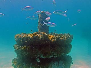 Artificial reef structure, Grayton Beach, Florida
