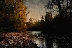 #The First Days Of Autumn (graceindirain) Tags: autumn fall river trees light shadow textured graceindirain