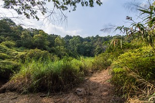 ramkhamhaeng national park - thailande 34