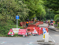 Digging It All Up (M C Smith) Tags: pentax kp road construction digging digger cones trafficlights red trees green forest bushes lamps post barriers work symbols letters numbers island