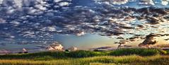 IMG_4700-03Ptzl1scTBbLGER (ultravivid imaging) Tags: ultravividimaging ultra vivid imaging ultravivid colorful canon canon5dmk2 clouds sunsetclouds fields farm panoramic pennsylvania pa scenic vista rural summer evening