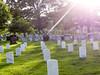 P1190498 (MilesBJordan) Tags: washington dc america capital washingtondc arlington cemetery national photography photograoher grandparents