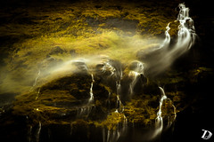 When Water Flies ©DeschampsDamien (deschdam6@gmail.com) Tags: wind gale waterfall water shapes colors nature force power powefull iceland south storm weather travel adventure longexposure mothernature photography outdoor yellow falls physics gravity cliffs explore