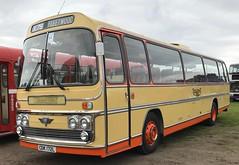 Yelloway (BiggestWoo) Tags: coach yelloway plaxton aec rochdale