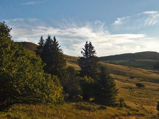 Forêt du Ché et montagnoune
