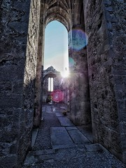 Quin Abbey (PhilnCaz) Tags: quin abbey quinn scenic ruins hdr processed edited highdynamicrange niksoftware philncaz nik olympus holiday picturesque holidaysummer reformation ruin weekend snapseed olympusomdem1markii em1markii omd omdem1markii ireland southernisland shannon anniversary em1 ii 2017 olympusrevolution