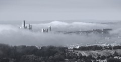 The coldest winter I ever spent was a summer in San Francisco (PeterThoeny) Tags: sanfrancisco california sanfranciscobay sanfranciscobayarea sanbrunomountain sanbrunomountainstatepark park statepark downtown fog panorama monochrome blackandwhite sony sonya7 a7 a7ii a7mii alpha7mii ilce7m2 fullframe fe2870mmf3556oss 3xp raw photomatix hdr qualityhdr qualityhdrphotography fav200